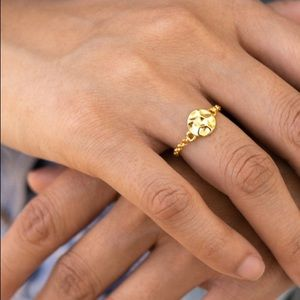 Gold Plated Hammered Disc and Chain Ring